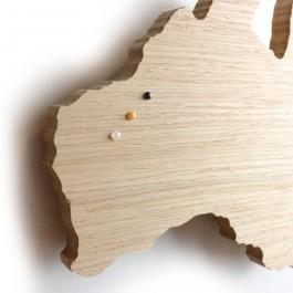 PIN POINTS - gunmetal klein voor houten wereldkaart