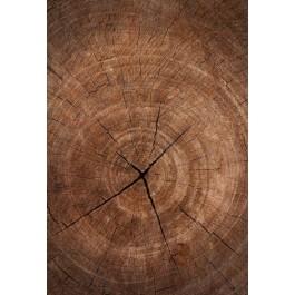 Outdoor 'houten' tapijt, Hoentjen Creatie