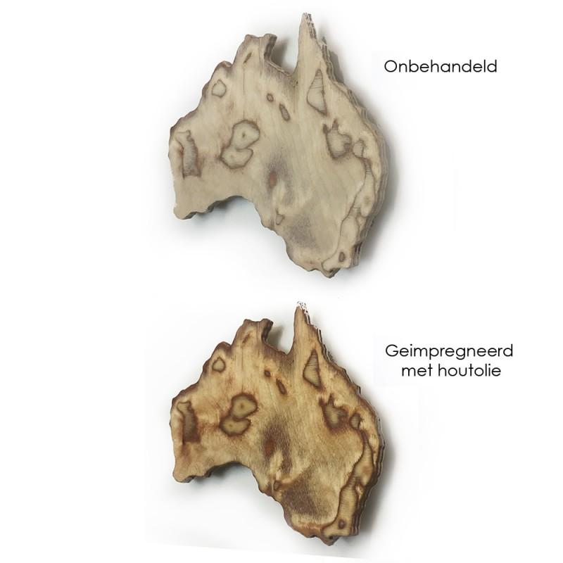 Hoentjen - Houten 3D wereldkaart met bergen, Berkenhout