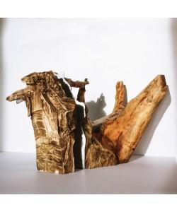 "Kunst object 3 ""Hout ontmoet Staal"" (wood design) Hoentjen"