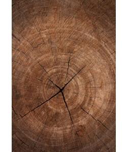 Outdoor 'houten' tapijt
